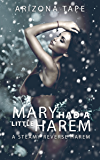 Mary Had a Little Harem: A Steamy Standalone Contemporary Reverse Harem