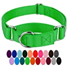 Martingale Heavyduty Nylon Dog Collar (Various Sizes and Colors Available)