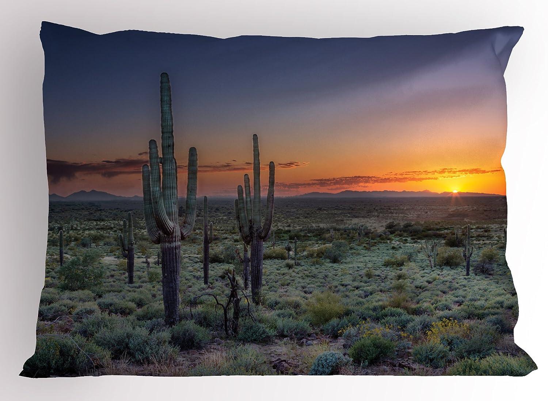 Arizona Kochschürze Tribal Saguaro-Symbol und Sun Waschbar Farbfest