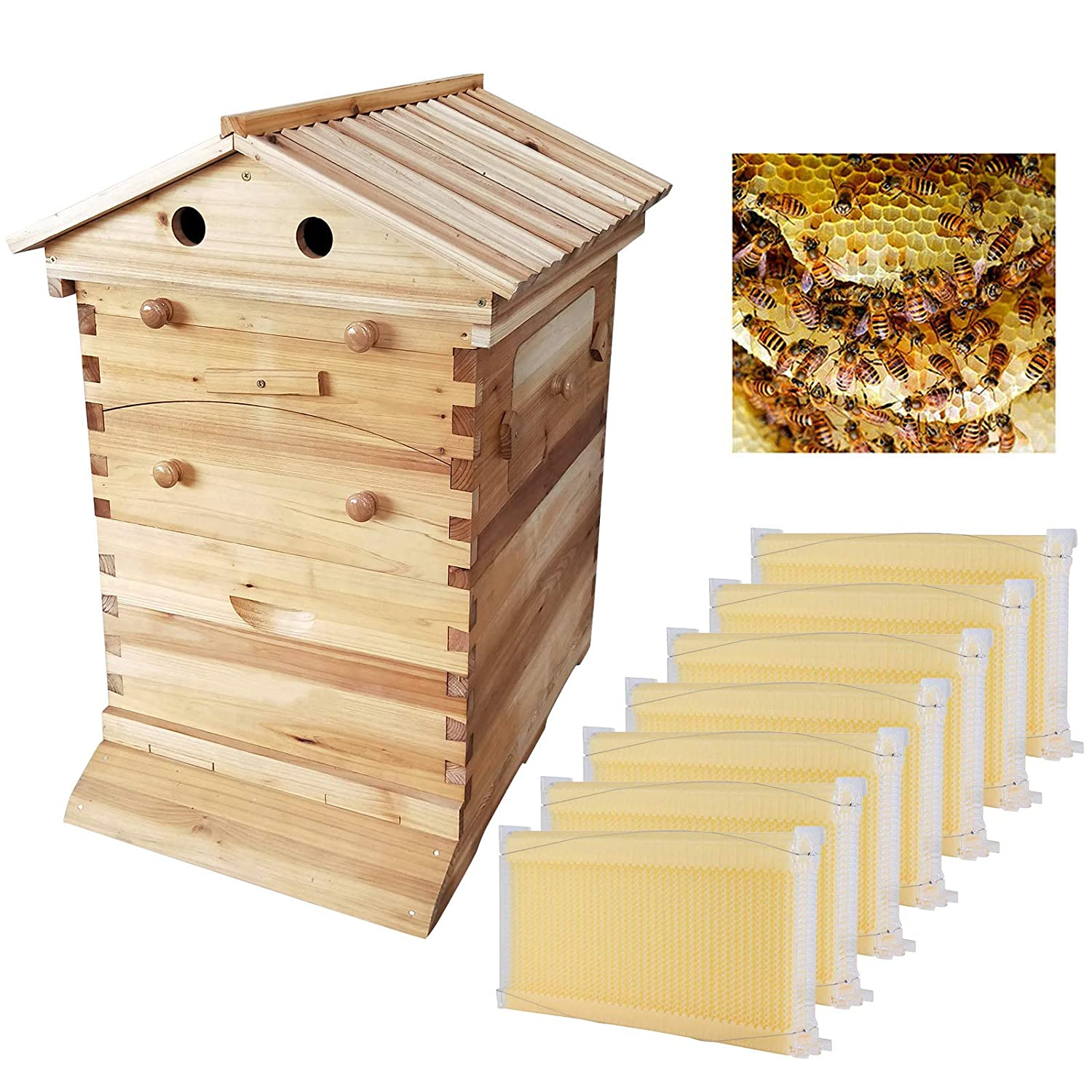 Auto Honey Hive Beehive Frames + Beekeeping Wooden House Beehive Boxes -7Pcs Auto Beehive Frame Comb - Bee Hive Boxes - for Beekeepers Food Grade BPA (Beehive Frame+Wooden Box)