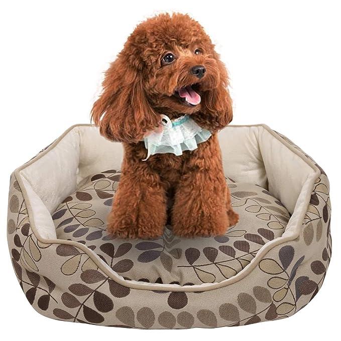 Lonlier Cama para Perro Sofá de Gato Cama para Mascotas con Cojín Acolchado Extraíble: Amazon.es: Ropa y accesorios