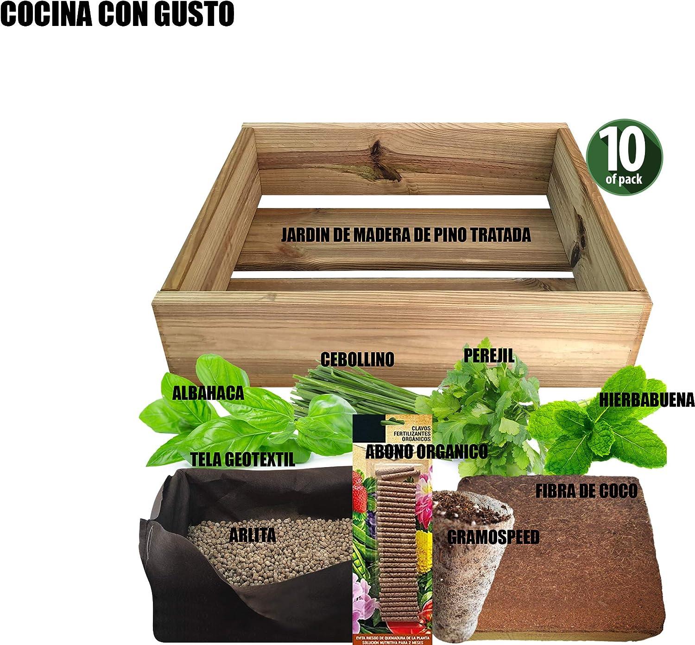 No Plan B for Earth Kit de Cultivo con Maceta de Pino Tratada. Semillas de Albahaca de Genova, Cebollino, Hierbabuena, Perejil