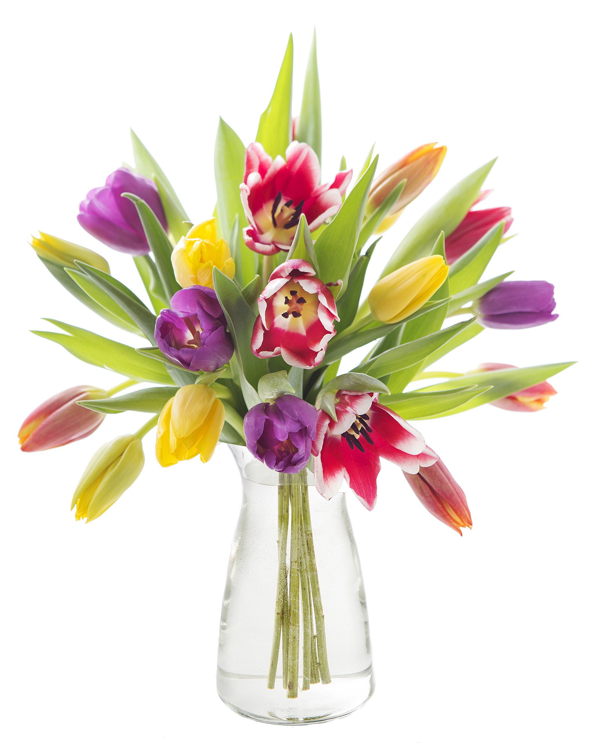 KraftBloom Rainbow Tulip Bouquet with Vase
