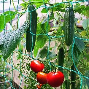Miuezuth Trellis Netting for Climbing Plants - Heavy Duty Garden Trellis Netting for Cucumber, Vine, Fruits & Vegetables Tomato Plants Trellis Net, Climbing Vining Plants (8.2' x 6.6'Ft)