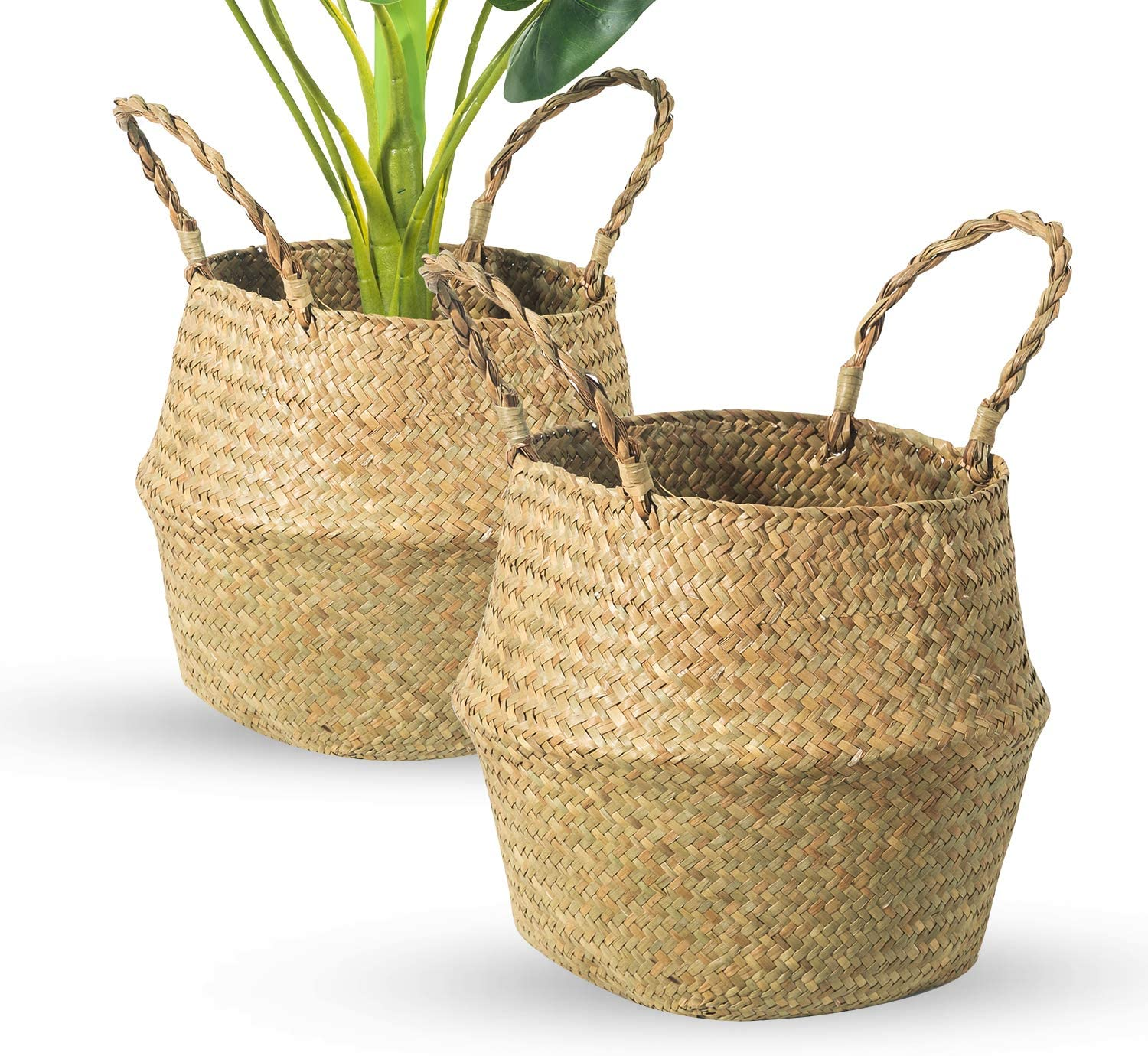 BrilliantJo Seagrass Belly Basket, Set of 2 Woven Plant Pot Holder Handmade Home Decor for Storage Plants Picnic Grocery Large(12.6 x 11.02 inch)
