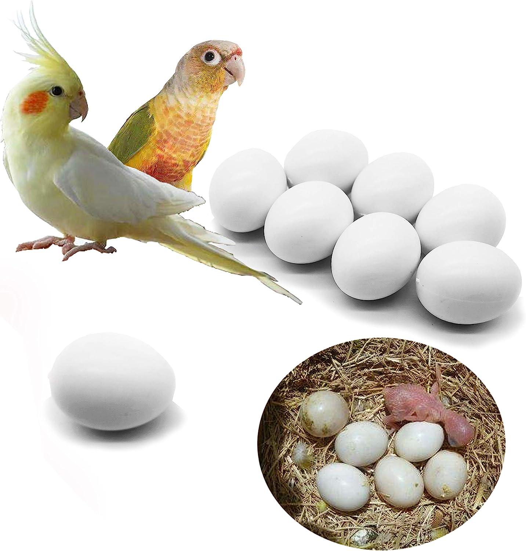 FOIBURELY 8 Pcs Solid Parrot Plastic Eggs Hatching Eggs Green Cheek, Lorikeet&Ringneck Dove, Quaker, Cockatiel. Trick The Birds to Stop Laying Eggs, Plastic Eggs