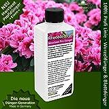 Rhododendron Dünger Azaleen düngen, Premium Flüssigdünger aus der Profi Linie