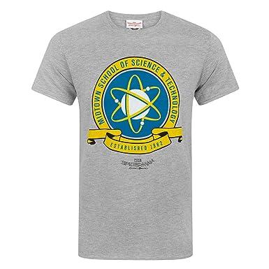 93ed95ee1 Spider-Man Homecoming Midtown School Men's T-Shirt Grey: Amazon.co ...