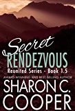 Secret Rendezvous (Reunited Series)