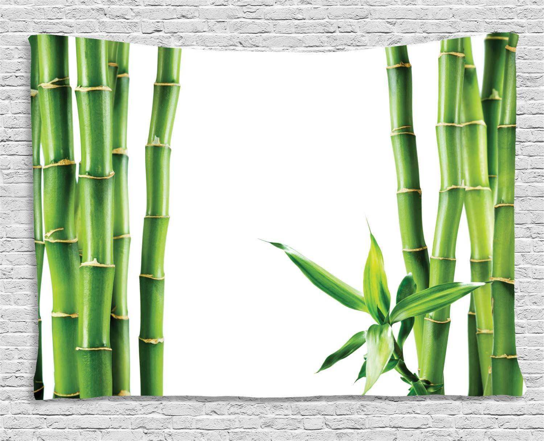 ABAKUHAUS Asiático Tapiz de Pared, Ramas de Bambú Tallos Cañas Plantas Tropicales Follaje Natural Fengshui, para el Dormitorio Apto Lavadora y Secadora Estampado Digital, 200 x 150 cm, Verde Hoja: Amazon.es: Hogar