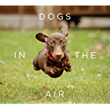 Dogs in the Air (English Edition)