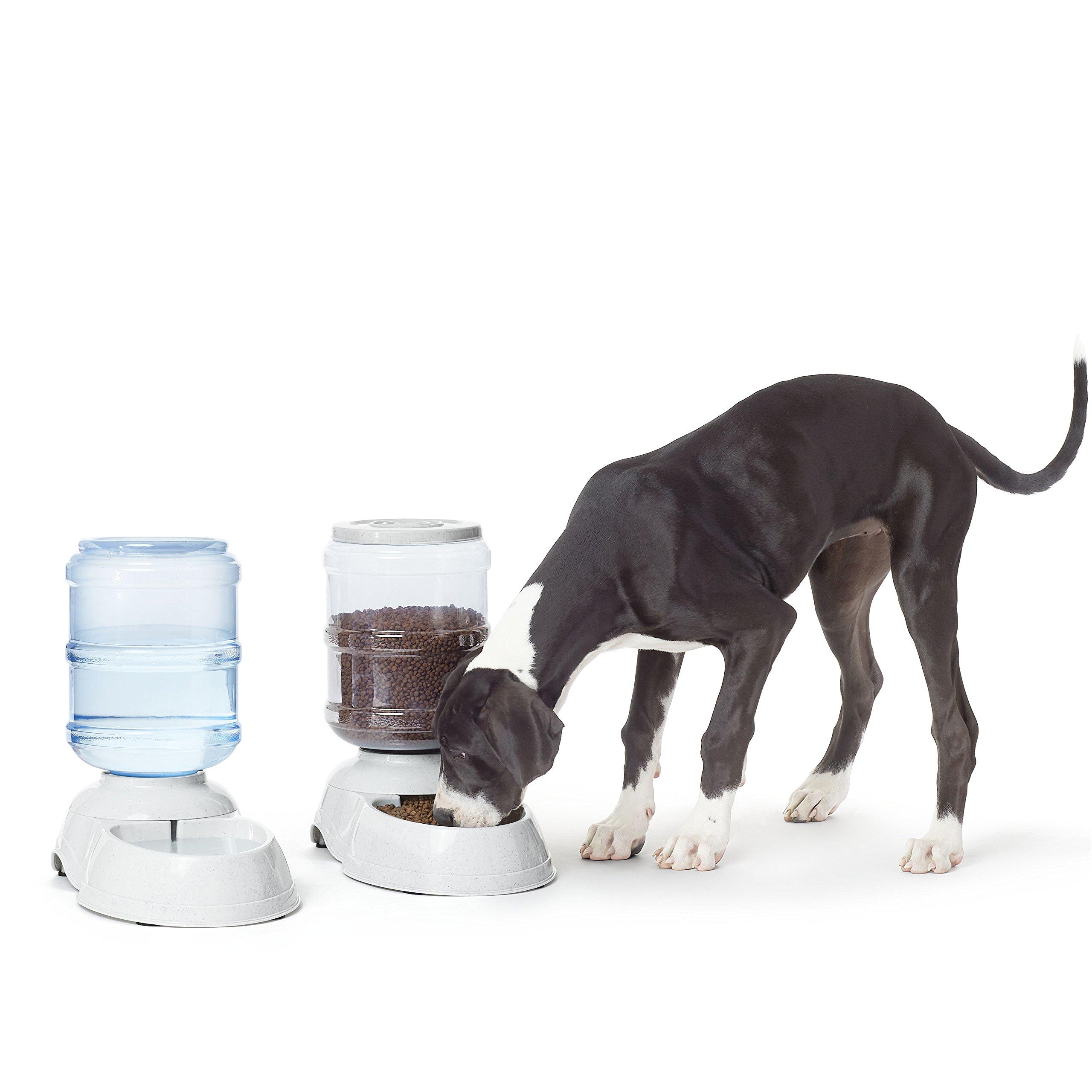 AmazonBasics Large Gravity Pet Food Feeder and Water Dispenser Bundle by AmazonBasics