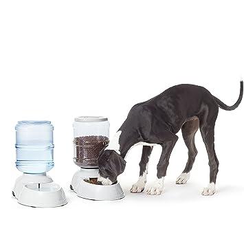 AmazonBasics - Dispensador de agua y comida, Grande: Amazon.es: Productos para mascotas
