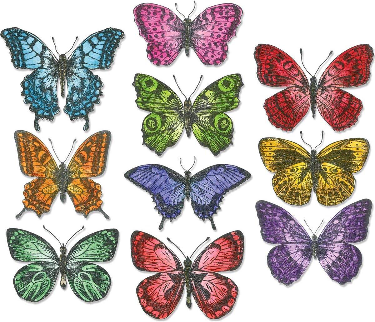 Sizzix Die Set 20 Pack One Size Framelits Multicolor Multi Color Flutter by Tim Holtz