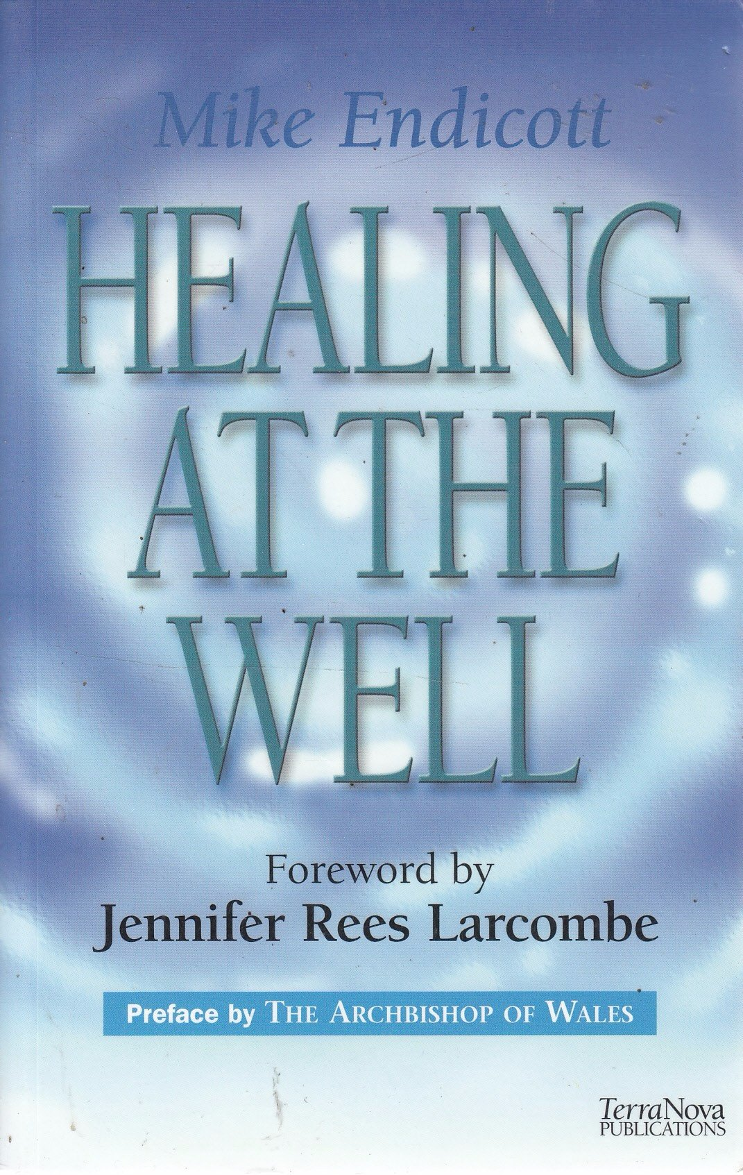 Healing at the Well ebook