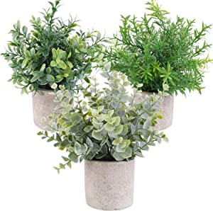 OUTLEE 3 Pack Mini Artificial Potted Plants Faux Eucalyptus Plants Boxwood Rosemary Greenery in Pots Small Houseplants for Home Decor Office Desk Shower Room Decoration