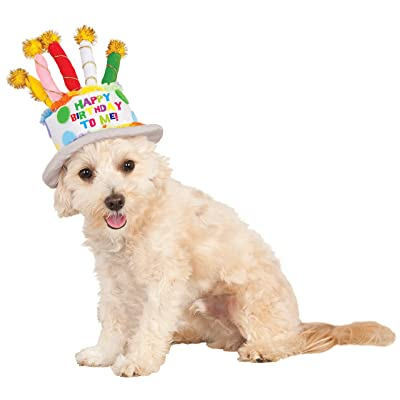Birthday Cake Hat for Pet, Small/Medium: Toys & Games