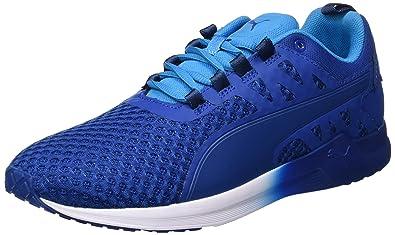 64941b4db2dd Puma Men s Pulse Xt V2 Mesh True Blue and Blue Danube Multisport Training  Shoes - 10