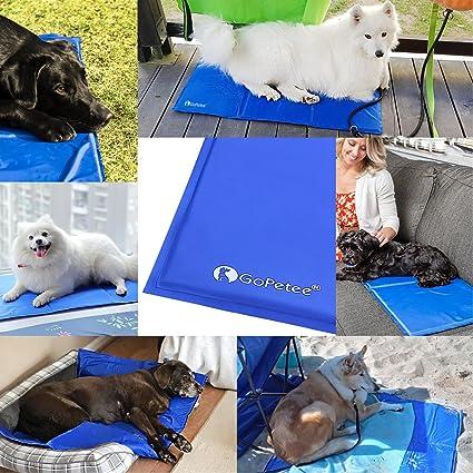 GoPetee Alfombrilla de Refrigeración para Mascotas Cama de Perro y Gato para Verano Animales Manta de Dormir Fresco Cojín Azul (M (50 * 65cm)) (M 50x65 cm): ...