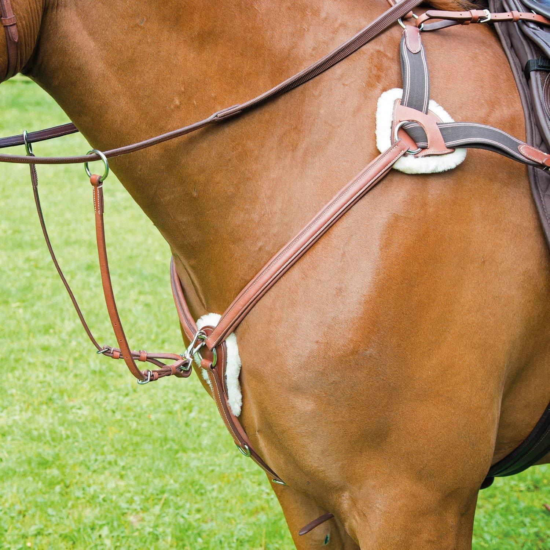 Oak Pony Oak Pony Shires Avignon 5 Point Breast Plate