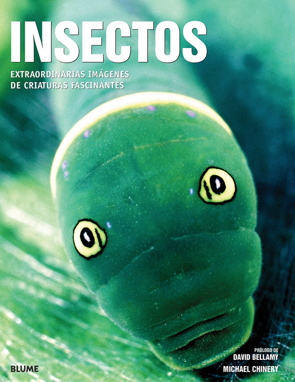 Gu¡a Campo Insectos (Guía Campo): Amazon.es: Bellmann, Heiko: Libros