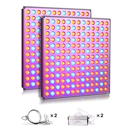 Roleadro LED Grow Lights for Indoor Plants, 75w Plant Lights with Red &  Blue Spectrum Grow Lamp for Hydroponic, Seedling, Succulents, Veg and  Flower