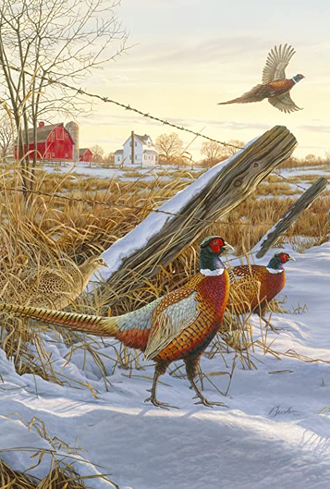 Toland Home Garden Pleasant Pheasants 28 x 40 Inch Decorative Winter Snow Bird Country Farm House Flag