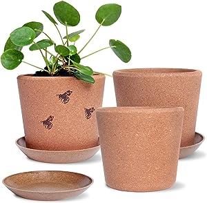 Wild Pact Set of 3 Cork Plant Pots 5.5