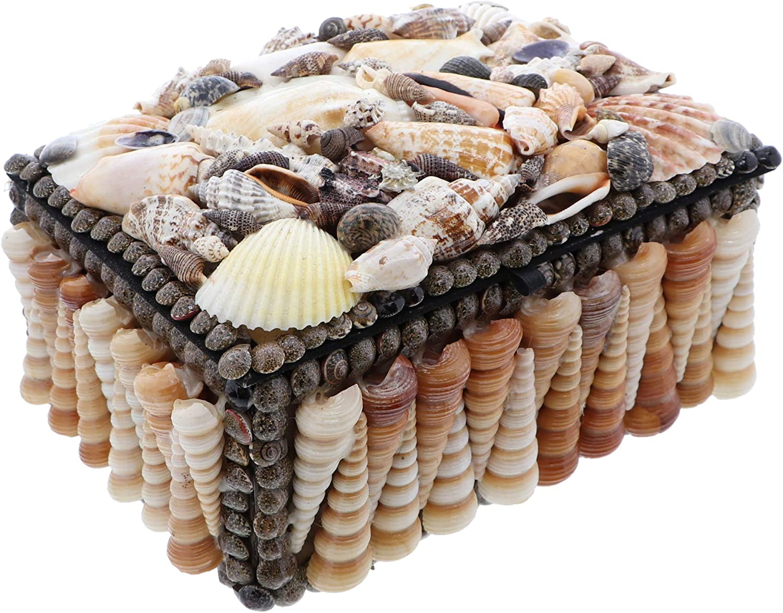 Li'Shay Large Terebra Shells Box Seashell Treasure Chest Beach Décor - Natural