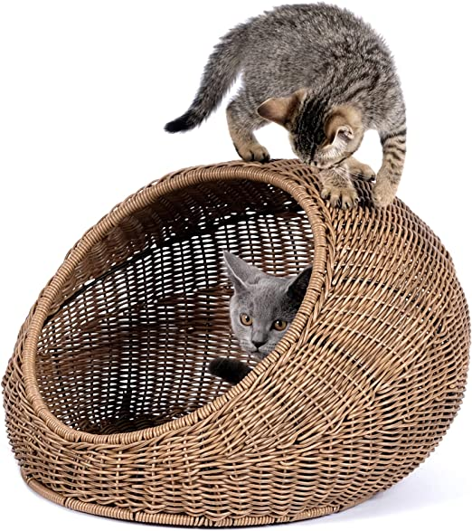 D+ Garden Cama de Mimbre para Gatos de Interior casa de Gatos Moderna Cubierta escondite de Casas de ratán para Mascotas en Cesta de cúpula, Lavable: Amazon.es: Productos para mascotas