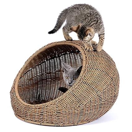 Amazon Com D Garden Wicker Cat Bed Dome For Medium Indoor Cats A