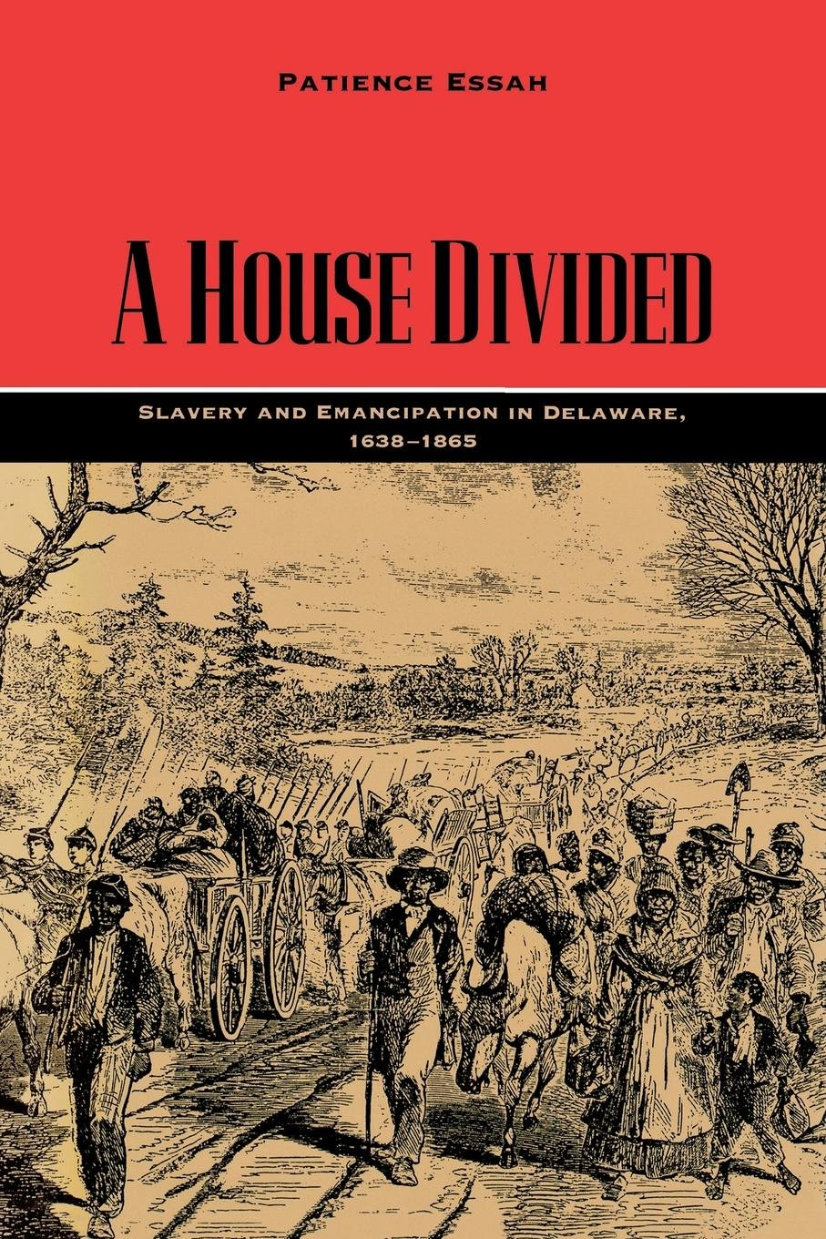 A House Divided: Slavery and Emancipation in Delaware, 1638–1865 (Carter G. Woodson Institute Series) ebook