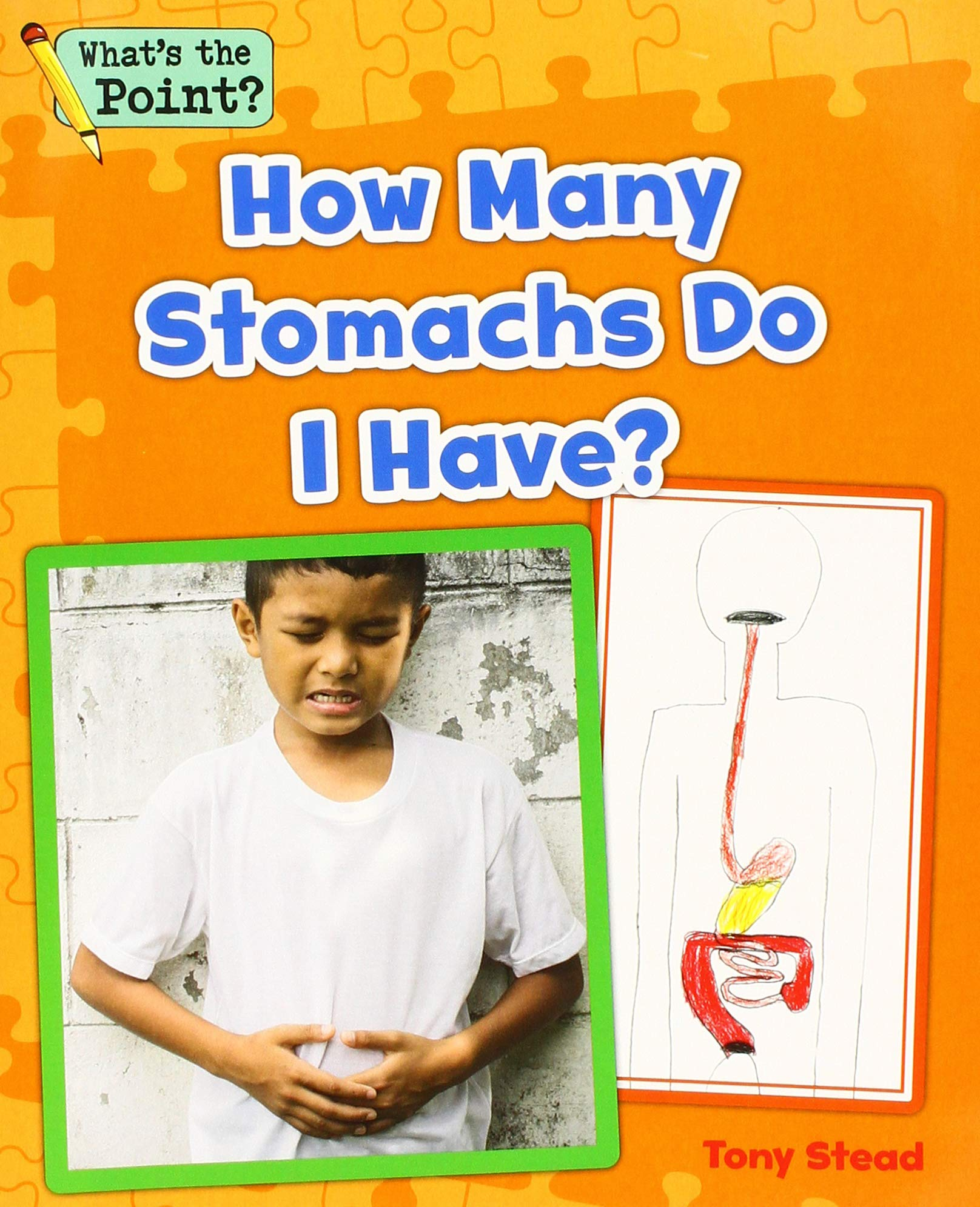 How Many Stomachs Do I Have? (What's the Point? Reading and Writing Expository Text) by Capstone Classroom