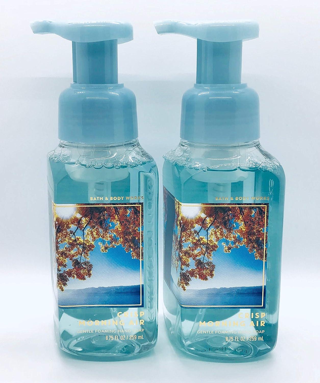Bath & Body Works Crisp Morning Air, Gentle Foaming Hand Soap (2 Pack)