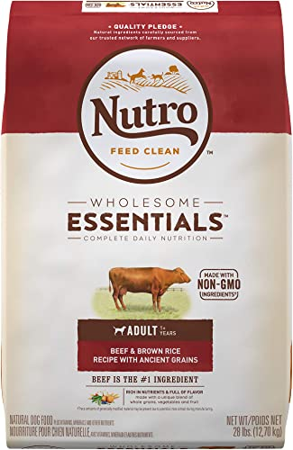 NUTRO Wholesome Essentials Natural Adult Dry Dog Food Beef Brown Rice