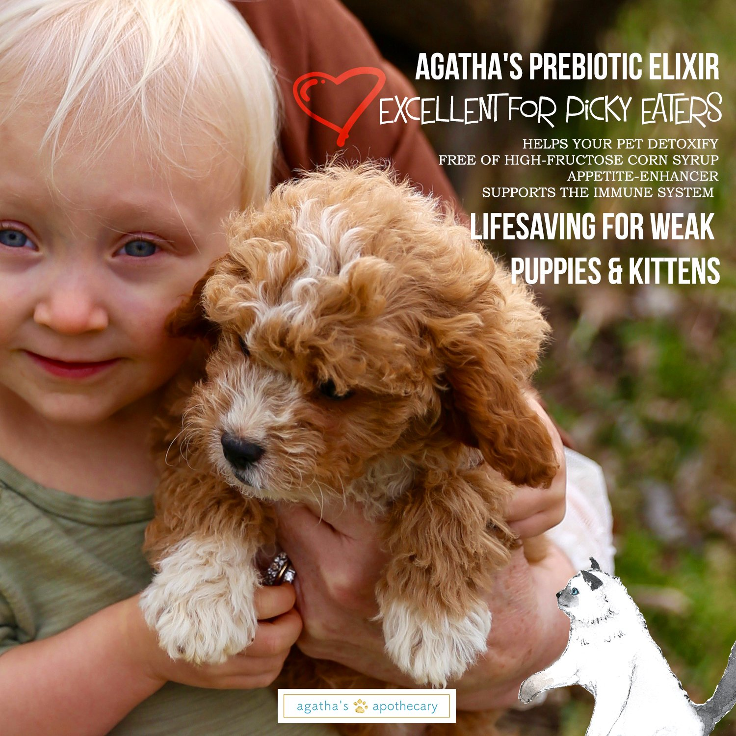 Agatha's Elixir Prebiotics for Dogs ● Appetite Stimulant for Picky Eaters and Senior Pets ● Green Tea & Milk Thistle Boost Immune System, Liver Detoxifier by Agatha's Pet Wellness (Image #6)