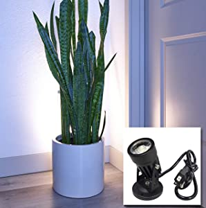 LED Indoor Spot Light for Plants & Accent Lighting - Uplight & Down Spotlight for Potted Plants Home & Living Room (3W LED) Decorative 110V Lamp with Plug for Indoor Wall (Warm White) (with Base)