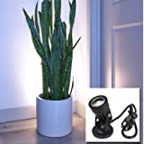 LED Indoor Spot Light for Plants & Accent Lighting - Uplight & Down Spotlight for Potted Plants Home & Living Room (3W…