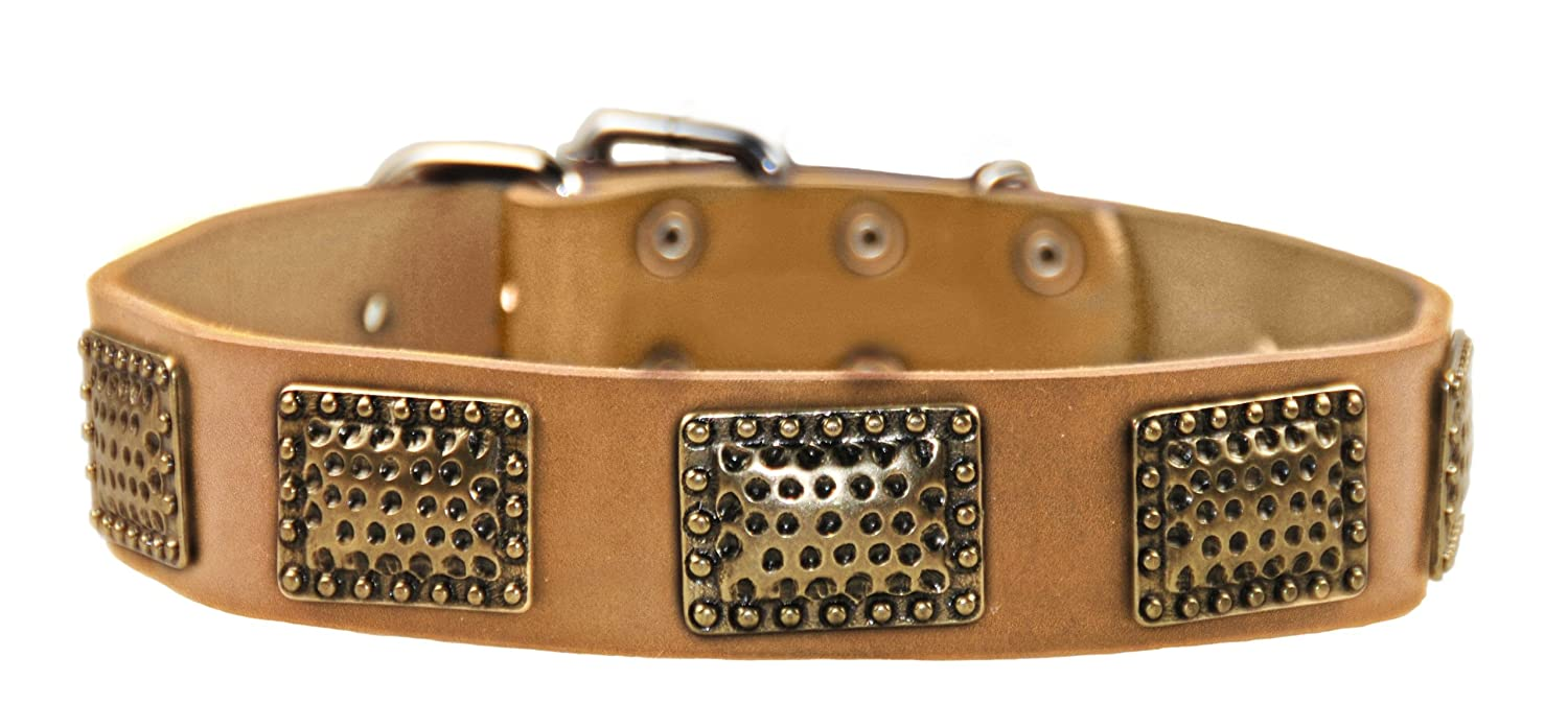 Dean and Tyler DRUM ROLL , Leather Dog Collar with Hammered Brass Plated Hardware Tan Size 28-Inch by 1-1 2-Inch Fits Neck 26-Inch to 30-Inch