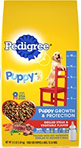 PEDIGREE Puppy Growth & Protection Dry Dog Food Grilled Steak & Vegetable Flavor, 3.5 lb. Bag