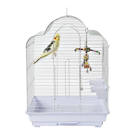 Brasilia Cockatiel Periquito pájaro jaula: Amazon.es: Productos ...