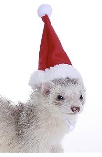 740fa096944 Bond    Co Patriotic Pets Uncle Sam Dog Hat Small  Medium Christmas ...