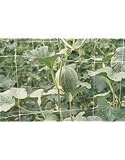 TENAX Red de Polipropileno de Soporte para orticoltura y floricoltura eslabones cm 15x 17, 1,00 METRI