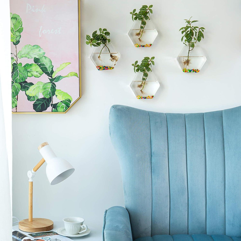 Glasseam Wall Hanging Forma di Vetro Fioriere 2 Pezzi Esagonale Piante Pentole Terrario Vaso Contenitore con 2.12 OZ Pietre Colorate Coperta Allaperto per La Casa Garden Ufficio di Nozze