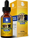 Hemp Oil For Dogs - Fast Results - Dog Anxiety & Stress Relief - Dog Arthritis & Joint Health - APPLY TO TREATS - Separation Anxiety Relief - Organic Hemp Seed Oil - NatulabUSA - 250mg - 1oz