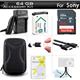 64GB Accessories Bundle Kit For Sony DSC-RX100M, DSC-RX100 V, DSC-WX350, DSCHX80/B, DSCHX90V/B, DSCWX500/B Camera Includes 64GB High Speed SD Memory Card + Replacement NP-BX1 Battery + Charger + Case