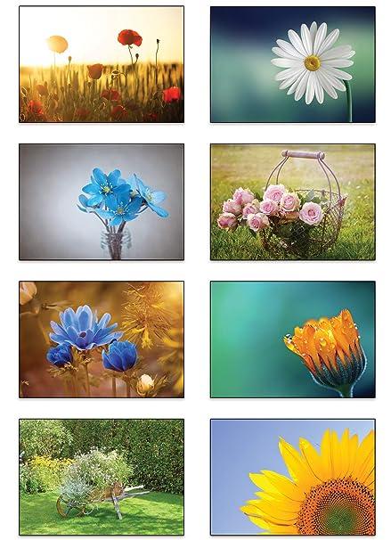 12 Klappkarten Umschläge Rosen Grußkarten Blumen Faltkarten Set floral grün