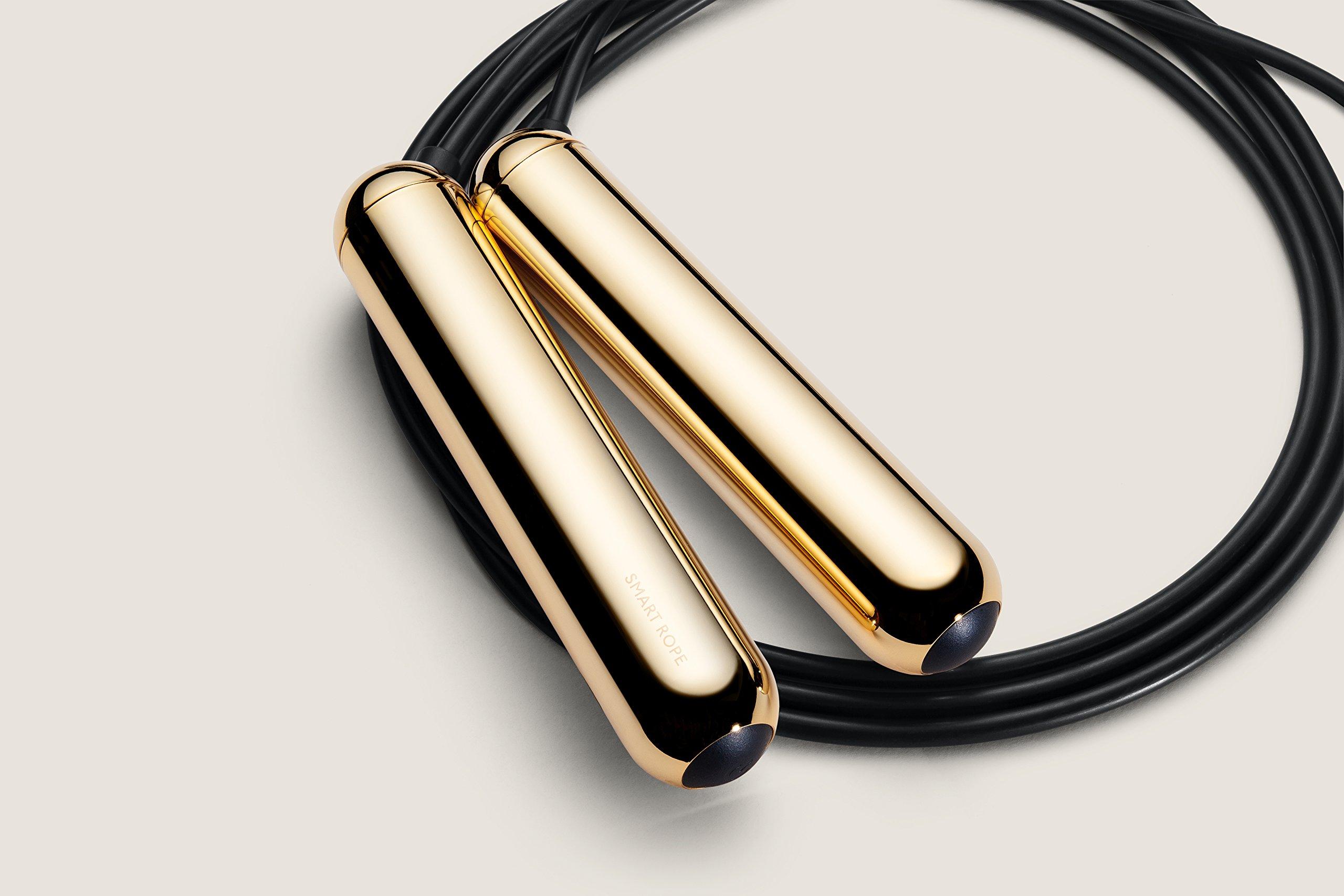 TANGRAM Factory Smart Rope - LED Embedded Jump Rope (Gold, Medium) by TANGRAM (Image #3)