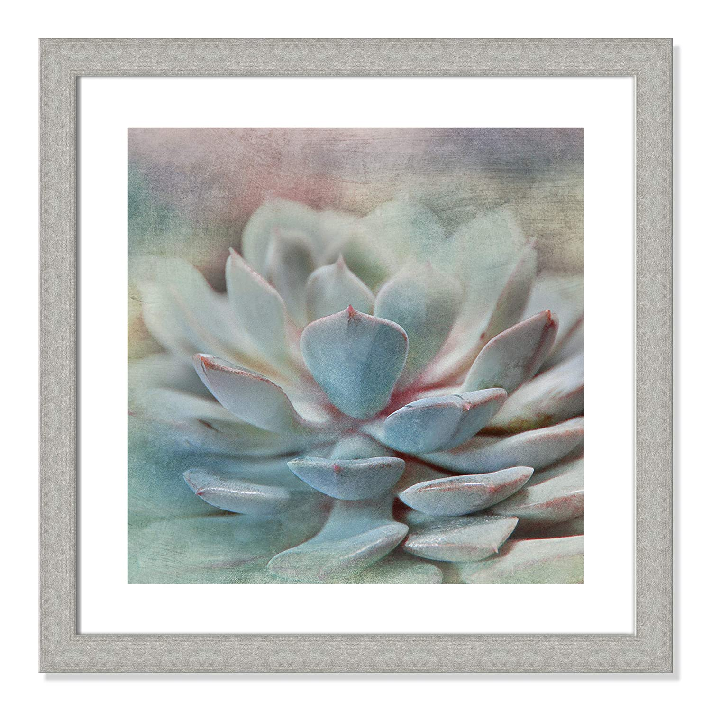 Casa Fine Arts Pastel Succulent I Modern Marco Archival Art Print 31 x 31 Matte White Frame