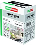 ParexGroup 2573 Joint mur 1 kg Blanc Email